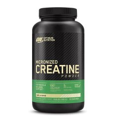 ON Creatine Powder 300 грамм